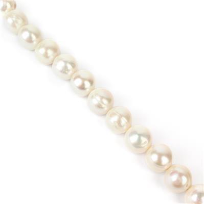 White Freshwater Near Round Pearls 10-11mm 40cm