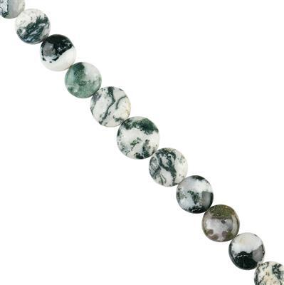 75cts Tree Agate Graduated Plain Puffy Coins Approx 10 to 14mm, 12cm Strand.