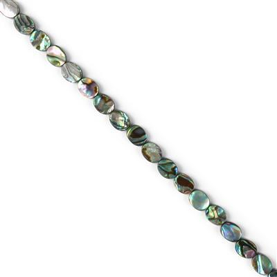 Oval Abalone Approx 10x8mm