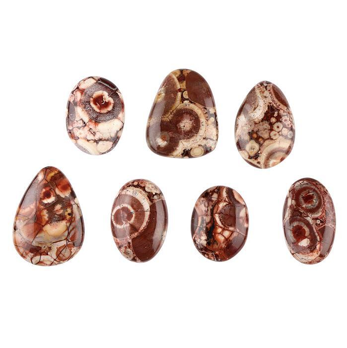 240cts Birds Eye Jasper Multi Shape Cabochons Assortment.