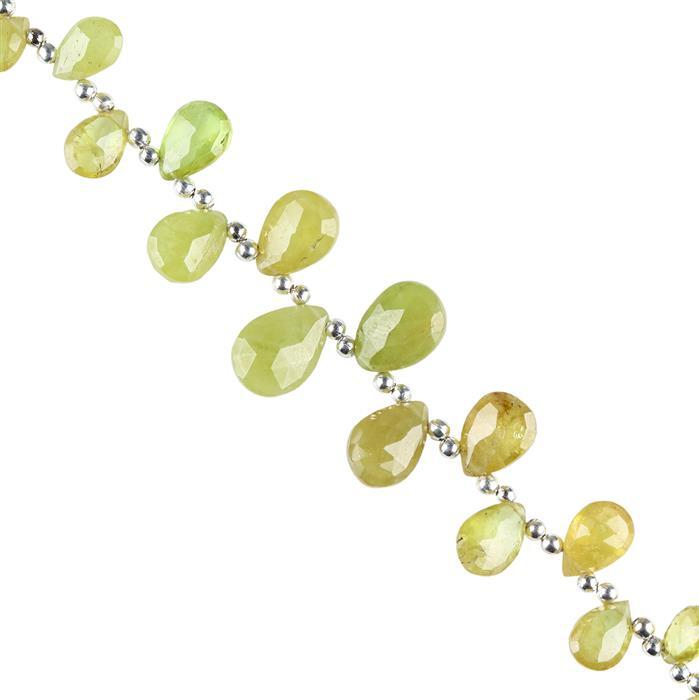 30cts Sphene Graduated Faceted Pears Approx 7x4 to 11x8mm, 12cm Strand.