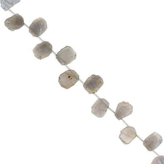 52cts Labradorite Graduated Top Drilled Plain Slices Approx 11x9 to 14x10mm, 18cm Strand.
