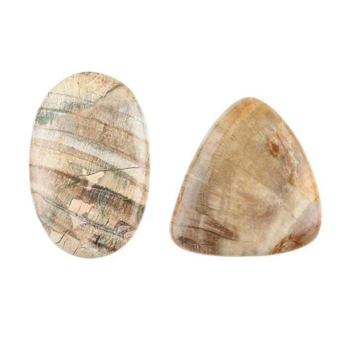 120cts Petrified Wood Multi Shape Cabochons. (Pack of 2)