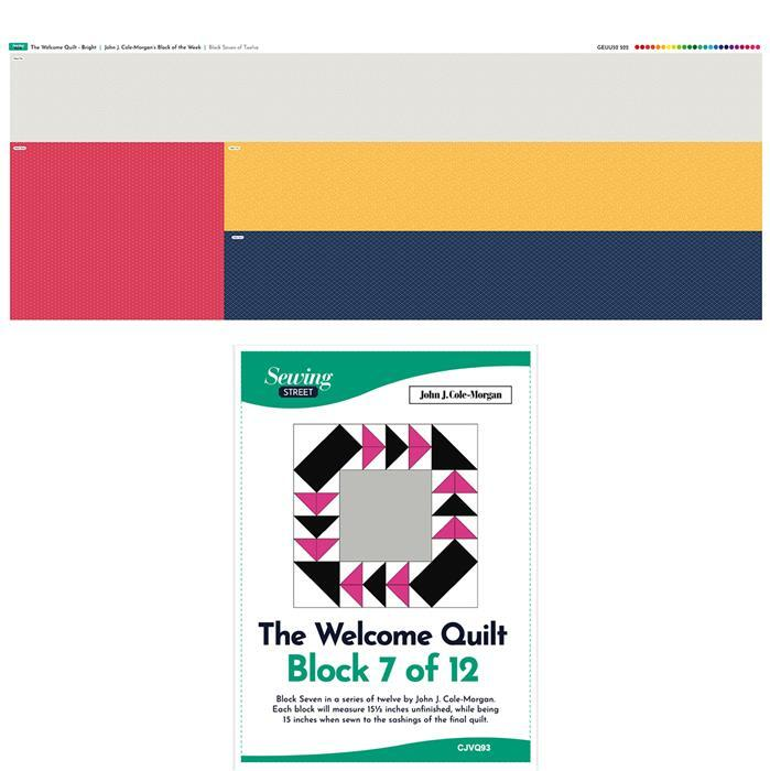 John Cole-Morgan's Bright Welcome Quilt Block of the Week - Block 7 (140cm x 50cm)