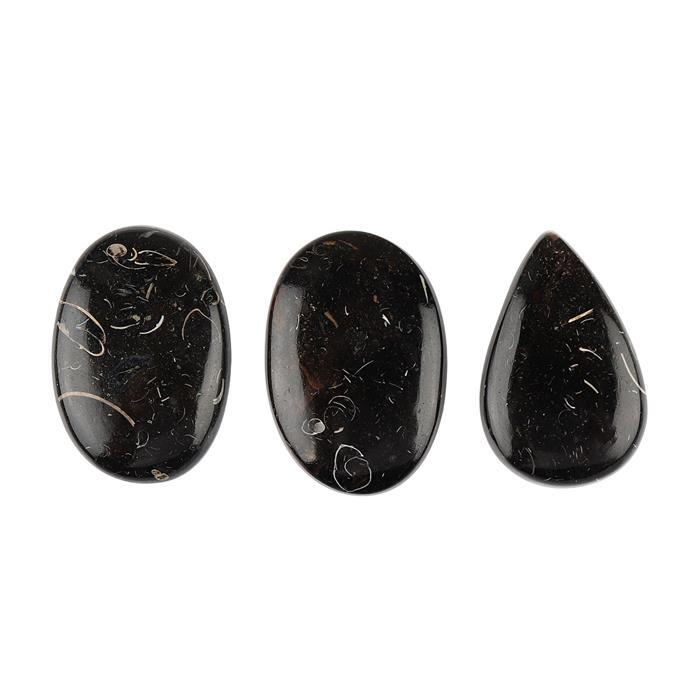 90cts Black Colus Fossil Multi Shape Cabochons Assortment.