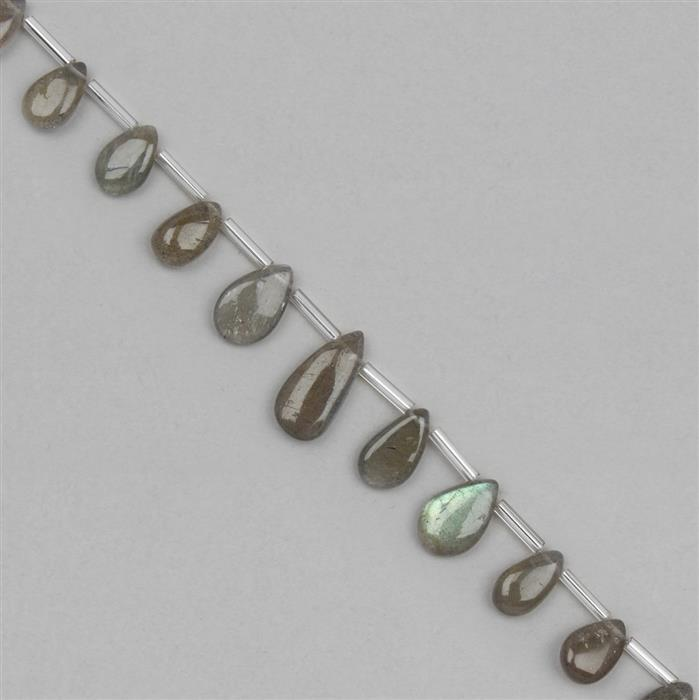 45cts Labradorite Graduated Plain Pears Approx 8x5 to 17x7mm, 18cm Strand.