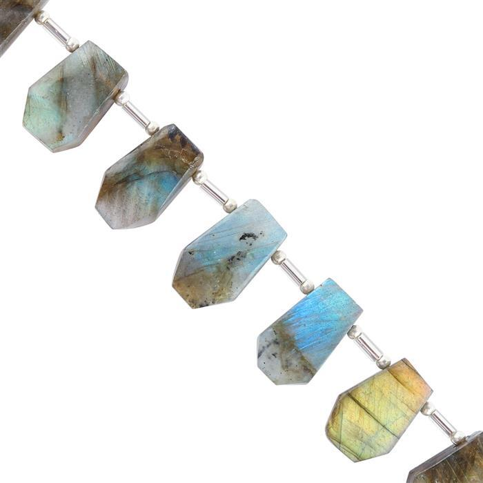 90cts Labradorite Graduated Plain Fancy Shapes Approx 15x10 to 19x12mm, 12cm Strand.