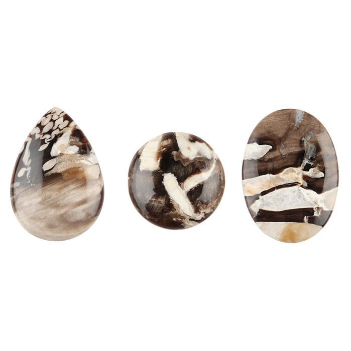 90cts Peanut Wood Jasper Multi Shapes Cabochons.