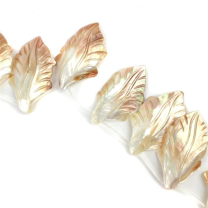 Multi-Colour Shell Leaves Approx 35x56mm, 12pcs