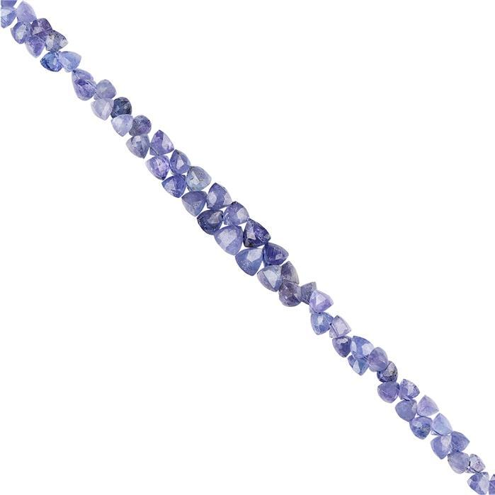 70cts Tanzanite Graduated Faceted Trilliants Approx 3 to 6mm, 20cm Strand.