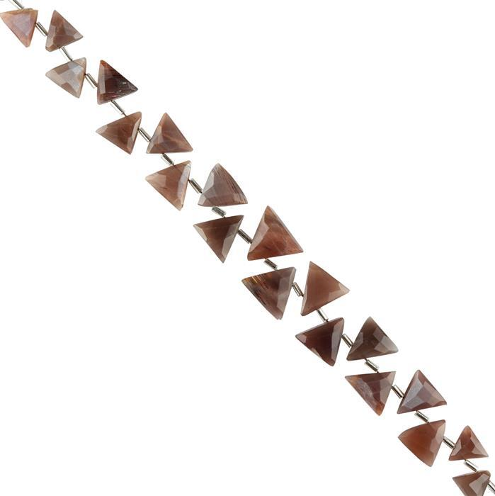 100cts Chocolate Moonstone Graduated Faceted Trilliants Approx 9x10 to 15x16mm, 20cm Strand.