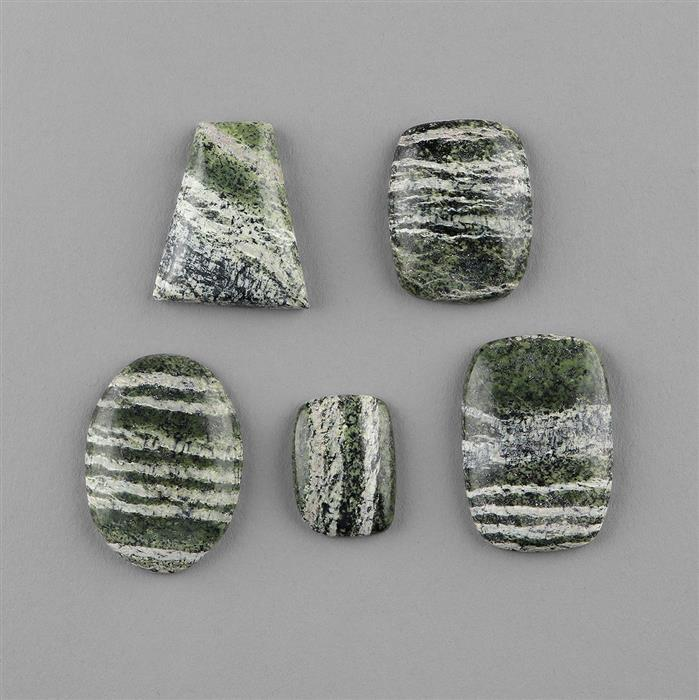 140cts Zebra Serpentine Multi Shape Cabochons Assortment.