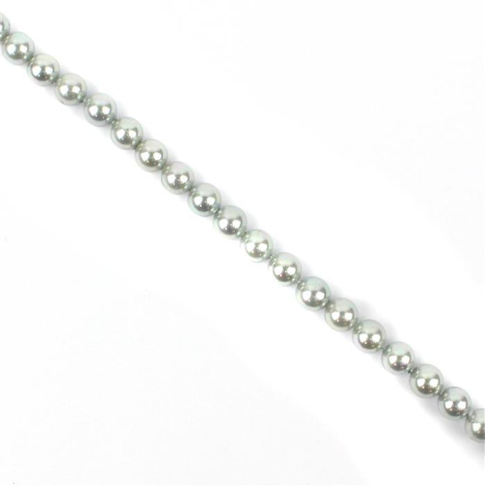 Silver Shell Pearl Plain Rounds Approx 6mm, 38cm Strand