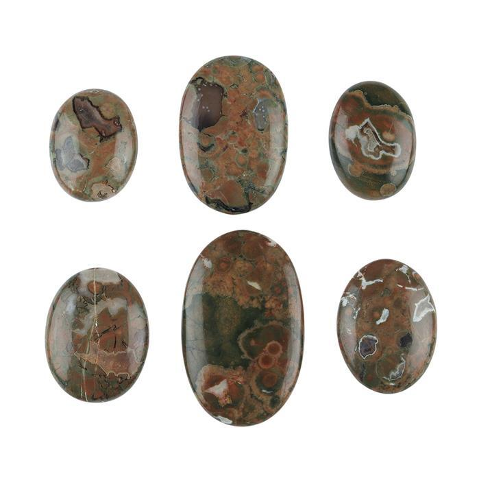 245cts Rainforest Jasper Multi Shape Cabochons Assortment.