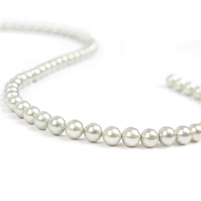 Pale Silver Shell Plain Rounds Approx 6mm, 38cm strand
