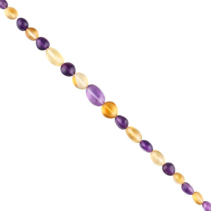 45cts Amethyst & Citrine Graduated Plain Matte Finish Tumbles Approx 5x4 to 9x7mm, 18cm Strand.