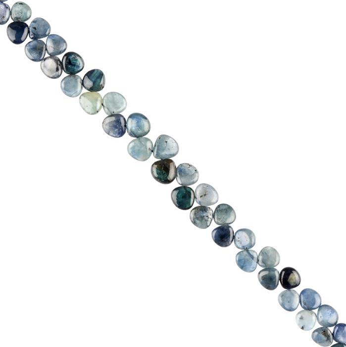 60cts Blue Sapphire Graduated Plain Flat Drops Approx 4 to 7mm, 22cm Strand.