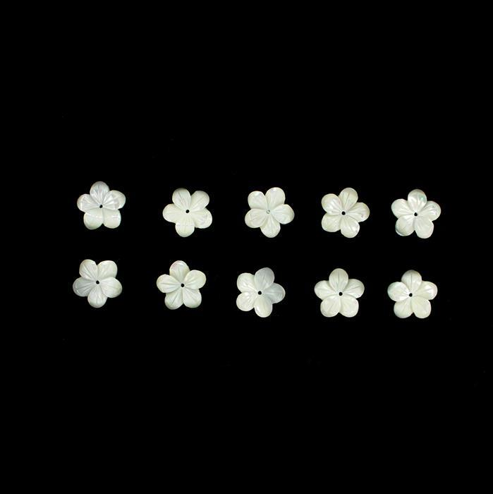 White Shell Five Petal Flowers Approx 14mm, 10pcs