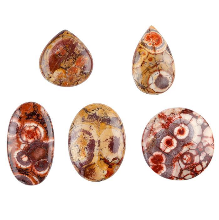 240cts Bird Eye Jasper Multi-Shape Cabochons Assortment.